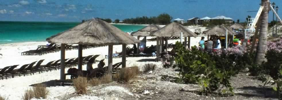 Beachfront bar and huts